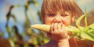 آیا سبزیجات هم میتوانند چاقکننده باشند؟